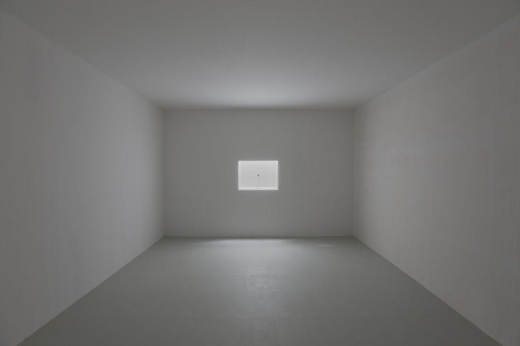 PAVILION 2013 芸術家の骨、ホワイトキューブ、ウィンドウディスプレー、Photo: Takeo Hibino