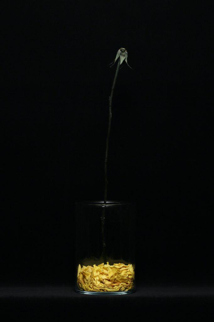 身刻上【花】